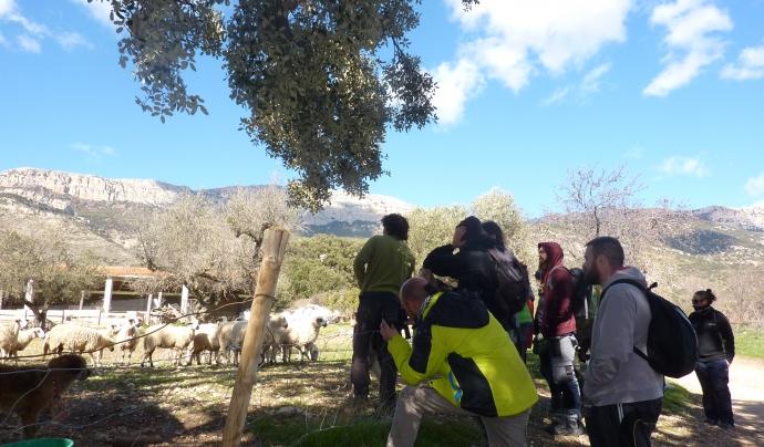 Escola de Pastors de Catalunya Font: Escola de Pastors de Catalunya