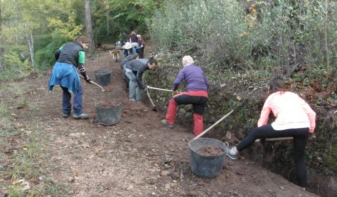 Jornades de voluntariat de boscos mediterranis del 2018 Font: GEPEC - Ecologistes de Catalunya