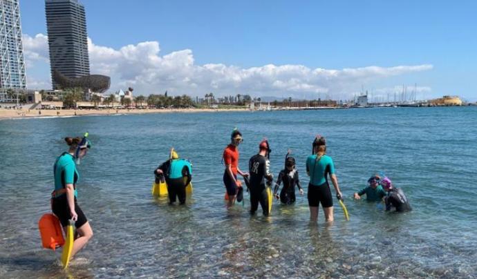 Urbamar és un projecte de ciència ciutadana que permet conèixer la riquesa litoral i marina de les platges de l'Àrea Metropolitana de Barcelona Font: Anèl·lides