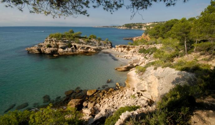 La Platja de l'Illot, a l'Ametlla de Mar (imatge: ametllamar.cat)