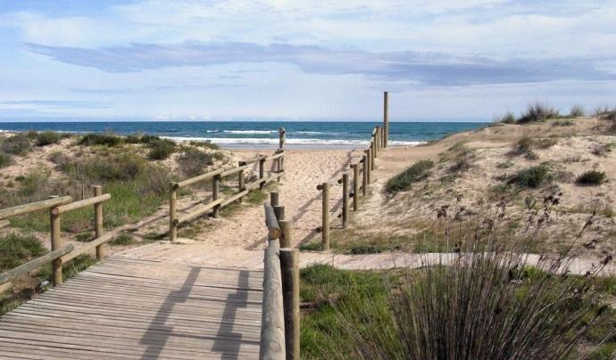 Platja dels Muntanyans de Torredembarra (imatge: turismetorredembarra.cat)