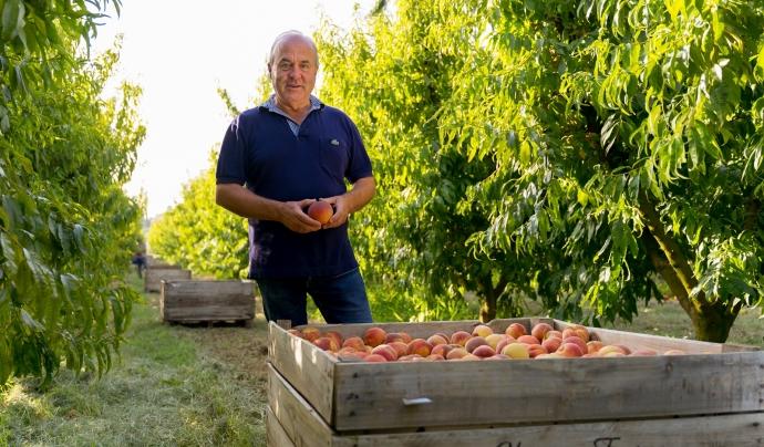 Ramon Sarroca, president de la Federació de Cooperatives Agràries de Catalunya. Font: Ramon Sarroca