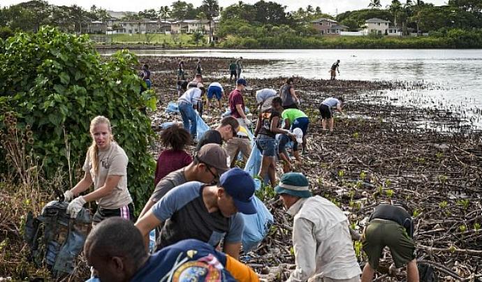 Projecte de voluntariat rural. Font: Greenfleet