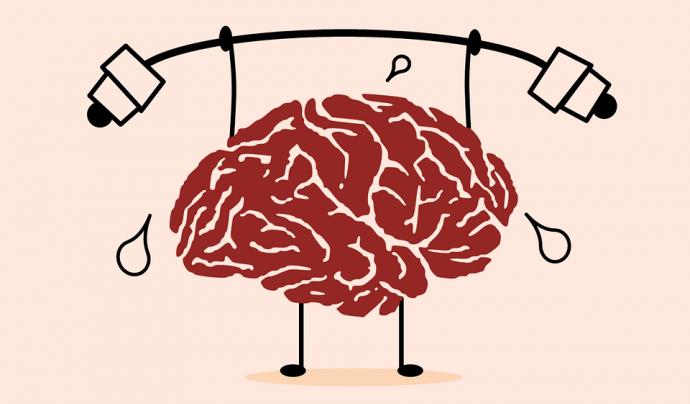 cervell fent peses Font: Pixabay