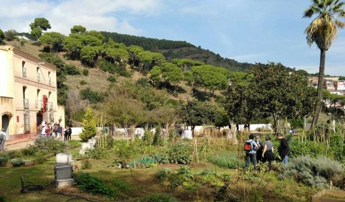 Menjadora d'ocells al Centre de Natura de Can Soler Font: Centre de Natura de Can Soler