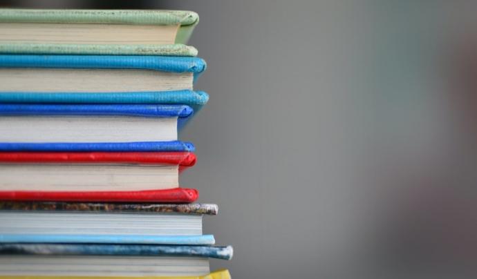 El cost teòric d'una plaça escolar s'ha calculat agafant com a referència un escenari hipotètic d'escolarització plenament equilibrada. Font: Unsplash. Font: Font: Unsplash.