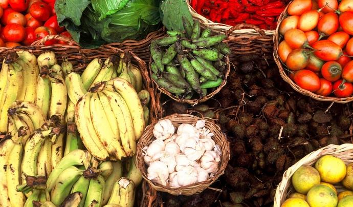 Les regions industrialitzades generen el 58% del desprofit alimentari mundial.  Font: WWF