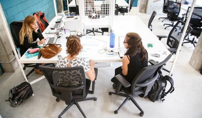 Sinèrgics dona cabuda a més de 40 cooperatives, artistes i persones emprenedores