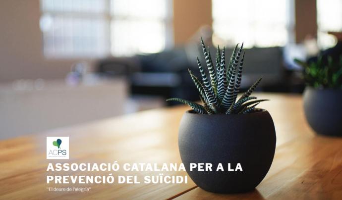 L'ACPS va néixer l'any 2012 per realitzar una tasca social en tot el que envolta la mort per Suïcidi i la seva prevenció Font: ACPS