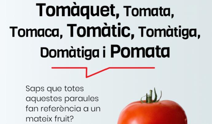 El català gaudeix d'una diversitat de parlars diferents que l'enriqueix i el fa encara més fort. Font: Plataforma per la Llengua. Font: Font: Plataforma per la Llengua.