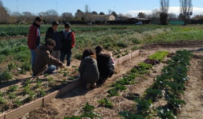 La proposta s'emmarca en el programa 'Transalimenta al Baix Llobregat', un projecte d'Aprenentatge Servei que apropa l'agricultura ecològica i l'alimentació saludable als i les joves. Font: DESOS Opció Solidària