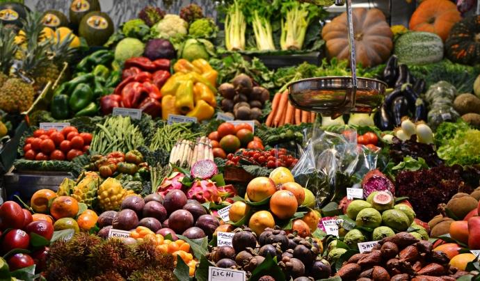 """Més que ingerir 5 peces de fruita al dia, les expertes recomanen augmentar el consum d'aliments vegetals"""". Font: Unsplash. Font: Font: Unsplash."""
