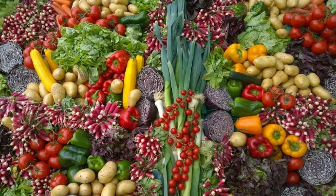 Algunes d'aquestes iniciatives neixen amb l'objectiu de recpatar aliments i productes de primer necessitat. Font: Unsplash. Font: Font: Unsplash.