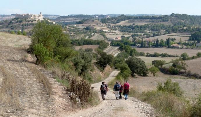 Imatge d'una ruta per la Segarra