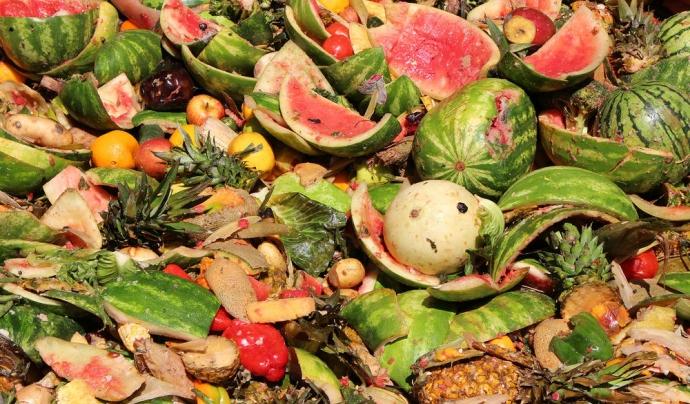 WWF i Tesco adverteixen que el 40% dels aliments cultivats es malbaraten. Font: WWF