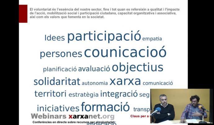 Captura del webinar sobre gestió del voluntariat Font: El Teb