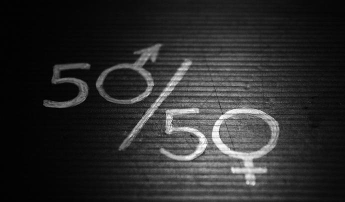 El projecte ha permès acompanyar les entitats en el disseny dels seus plans d'igualtat. Font: Pixabay