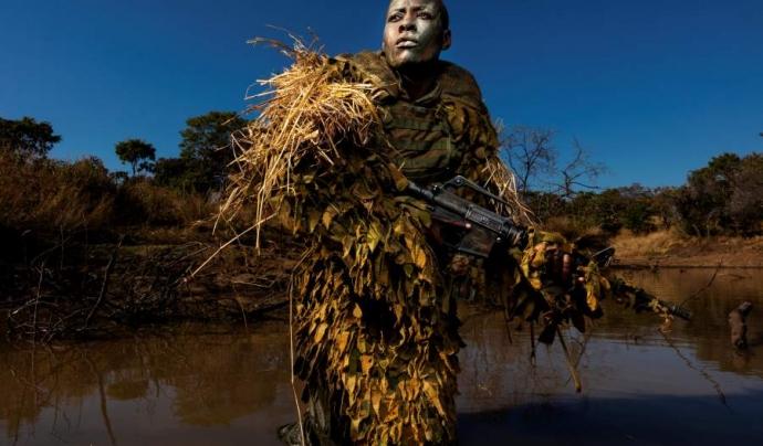 L'exposició dona a conèixer els treballs guanyadors del prestigiós concurs de fotoperiodisme i narrativa digital. Font: Getty Images Brent Stirton. Font: Font: Getty Images Brent Stirton.