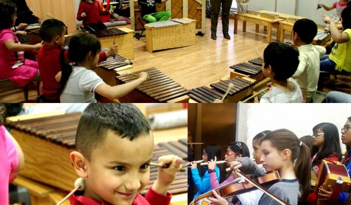 Xamfra. Font: web Diari de l'Educació