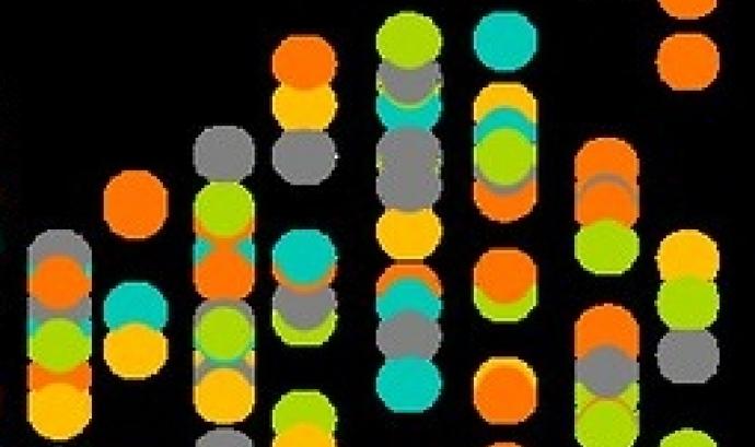 Fotografia de la representació de dades