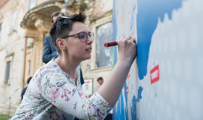 Acte de la iniciativa 'Minority SafePack' a Romania