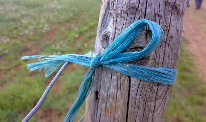 Cinta lligada a un arbre. Font: dUENdEdÚ (Flickr) Font: