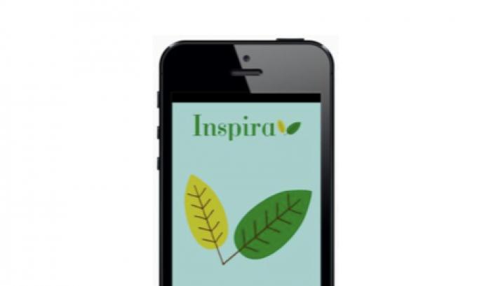 Revista digital Inspira