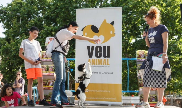 Fira Veu Animal 2019. Font: Veu Animal Font: Veu Animal