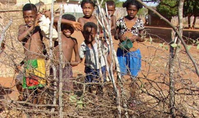 Imatge: Acció contra la fam