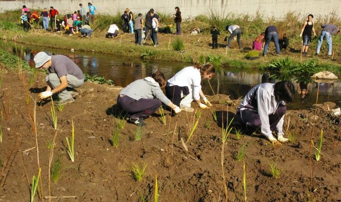 1a plantada Fes reviure el Ripoll! 2009 (foto: ADENC) Font: