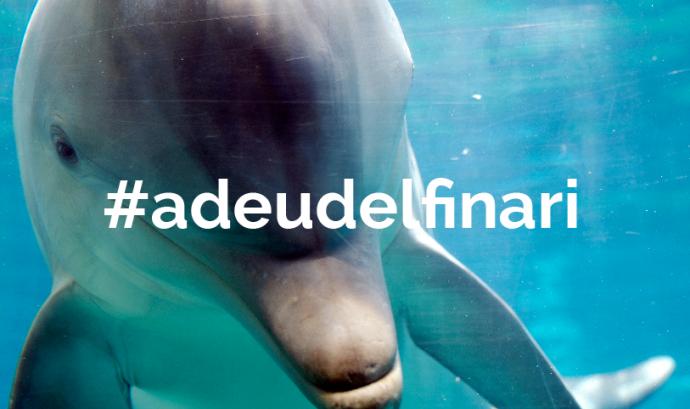Faada llança una campanya de recollida de signatures pel tancament del delfinari de Barcelona (imatge: adeudelfinari.org) Font: