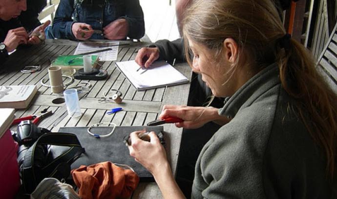 Cada any més de 200 anelladors i anelladores enregistres més de 70000 aus (imatge: ornitologia.org)