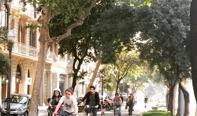 Ciclistes circulant per la Diagonal de Barcelona sota les alzines