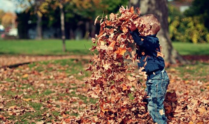 Children & nature network promou la connexió entre infància i natura