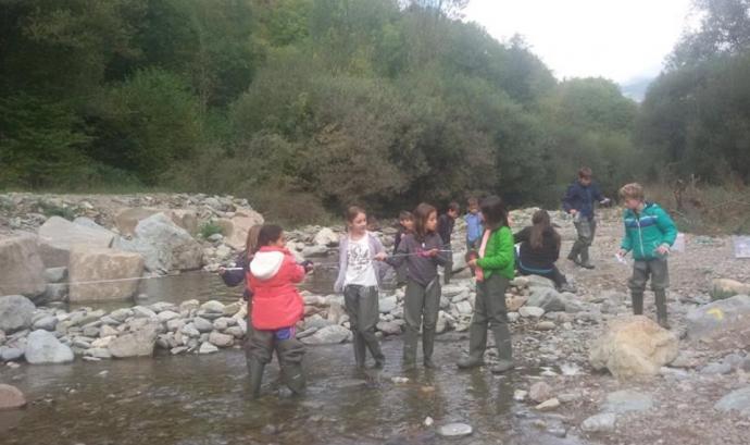 Un grup de voluntariat analitzant el riu Rigart Font: Projecte Rius