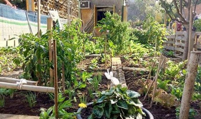 L'aplec vol crear una comunitat estable de persones interessades en agricultura urbana a Barcelona