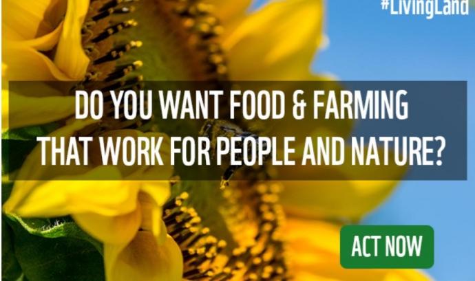 La campanya Living Land recull signatures per una Política Agrícola Europea més sostenible Font: Living Land