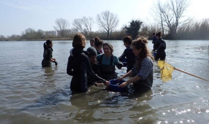 Voluntariat Ambiental al Ter amb La Sorellona