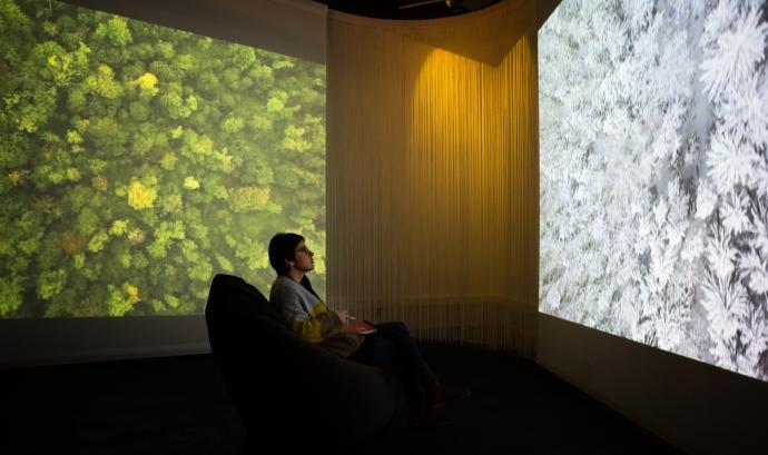 L'exposició Som Natura es pot visitar al Museu Blau fins el novembre de 2019