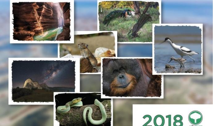 Durant el mes de maig es pot participar al concurs de fotografia Wiki Loves Earth i enriquir la Wikipedia d'imatges de natura lliures
