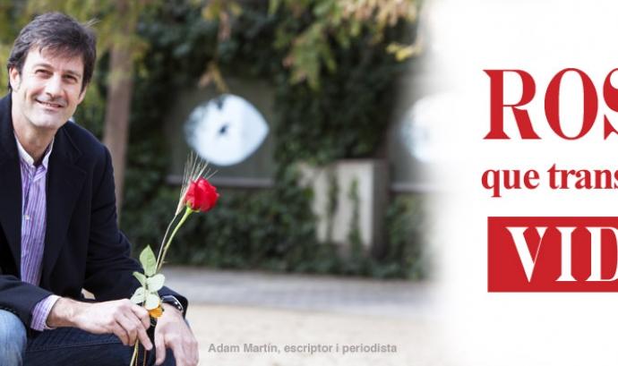 6 formes de regalar solidaritat per Sant Jordi