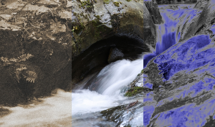 Conferència sobre els ecosistemes fluvials de Poblet