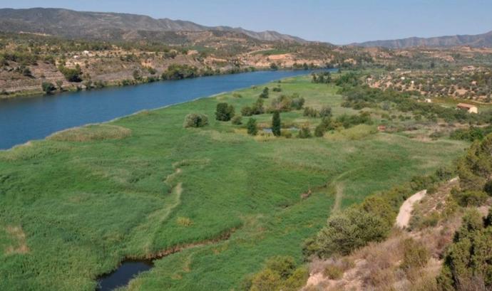 L'Agència Catalana de l'Aigua (ACA), la Confederació Hidrogràfica de l'Ebre (CHE) i el Grup de Natura Freixe (GNF) impulsen un acord per millorar la conservació ambiental d'aquests ecosistemes. Font: Agència Catalana de l'Aigua