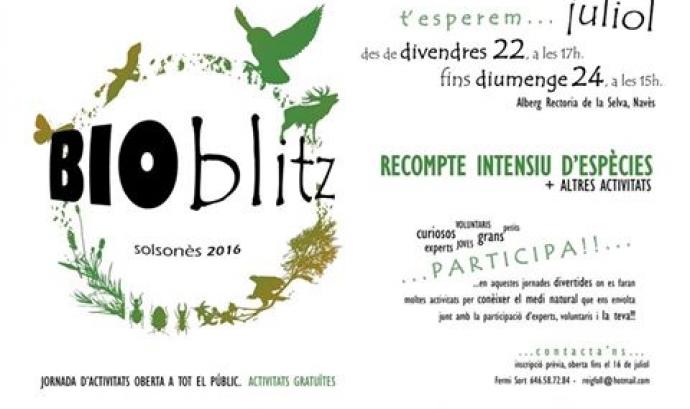 Cartell del Bioblitz que es celebra del 22 al 24 de juliol al Solsonès, amb el Centre d'Estudis Lacetans i el Grup Naturalista Osona (imatge: lacetans.org)