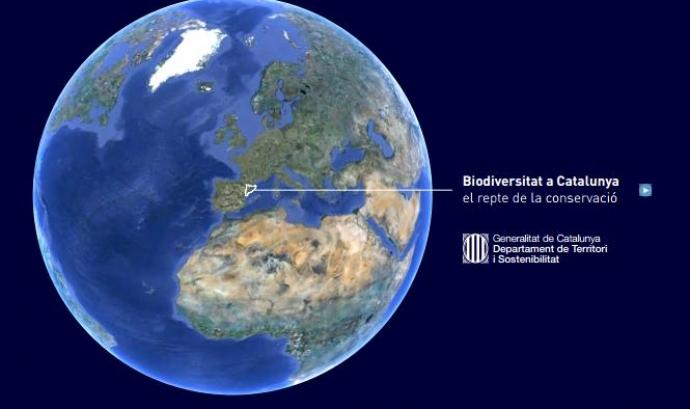 Biodiversitat a Catalunya Font: