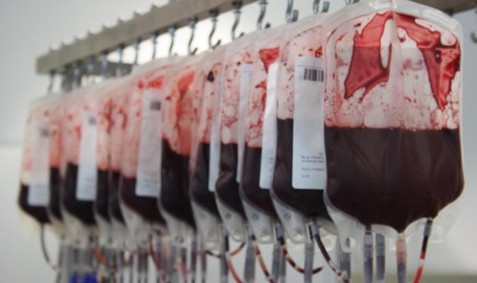 Bosses de sang al laboratori del Banc de Sang i de Teixits. Font: FCVS - Alba Pueyo