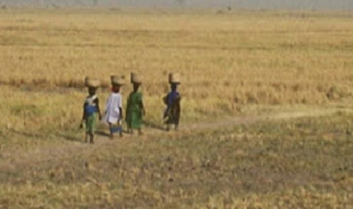 Dona, Àfrica rural i aigua Font: