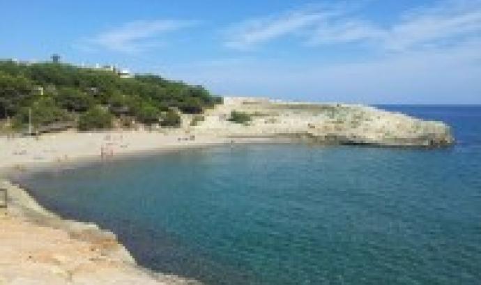 Sortida amb el Gepec per conèixer els valors naturals de la platja de Canyadell