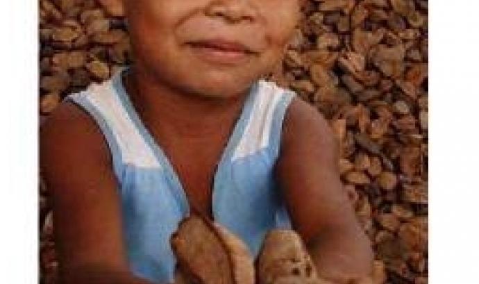 Cartell de la xerrada sobre l'Amazònia de la UPC