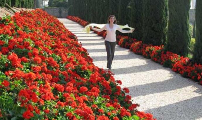 """Projecció del film """"El Jardiner"""", al cicle Cinema i Jardí (imatge: el jardiner)"""